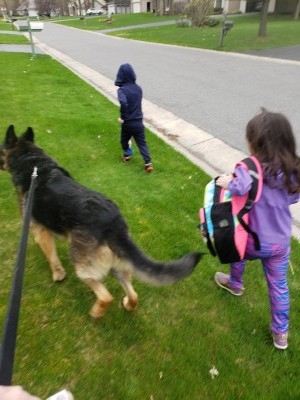 2 children and dog